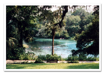 Dunnellon Florida Real Estate, Crystal River Real Estate